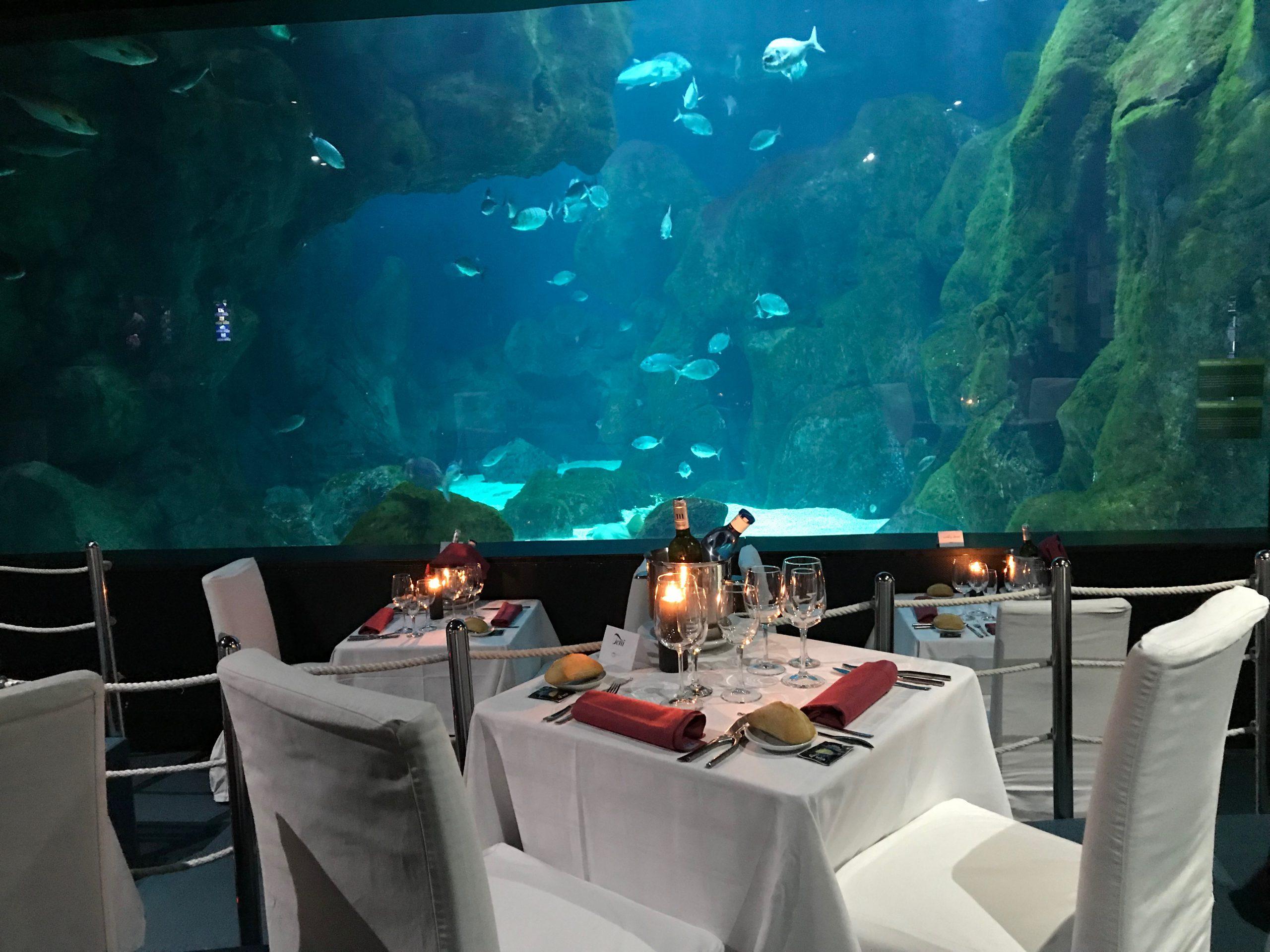 Nuevas fechas Cenas bajo el Mar