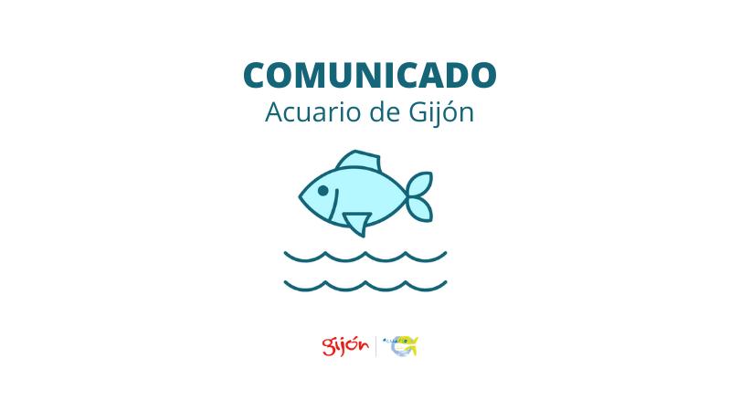 Cierre temporal del Bioparc Acuario de Gijón